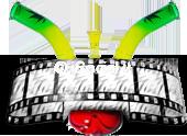 bongstreaming.com film in streaming