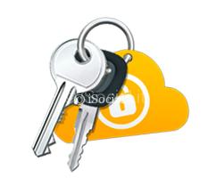 norton identity safe salva password