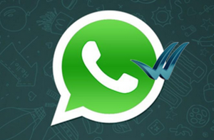 whatsapp-check-blue